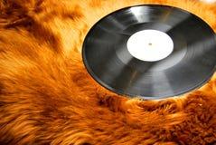 Record su pelliccia Immagine Stock Libera da Diritti