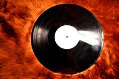 Record su pelliccia Fotografia Stock Libera da Diritti