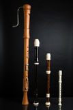 Recorder Family. A family of recorders on black Royalty Free Stock Photography