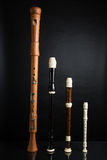 Recorder Family. A family of recorders on black Royalty Free Stock Photo