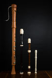 Recorder Family. The recorder family on wood with a black background Stock Photo