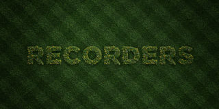 RECORDERS - fresh Grass letters with flowers and dandelions - 3D rendered royalty free stock image. Can be used for online banner ads and direct mailers Stock Photo