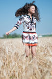 Recorra en campo de trigo en día de verano asoleado. Imagen de archivo