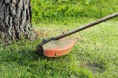 Recorte de la hierba cerca de un tronco de árbol fotografía de archivo