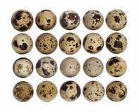 Recorte de los huevos de codornices Foto de archivo