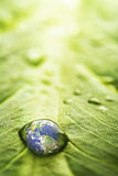 Recovery - earth Royalty Free Stock Photos