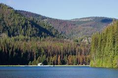 Recration Bereich auf a lakeshore Lizenzfreies Stockbild