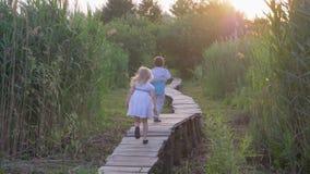Recreação exterior, amigos pequenos ativos menina e atualização e corrida do jogo do menino na ponte de madeira na natureza entre filme
