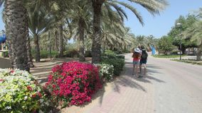 Recreation area along the bay in Dubai, United Arab Emirates. Tourists walk among palm trees and flowers. Tourism, holidays, sights, impressions for life stock image