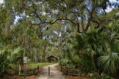 The recreation area in the Ocala National Forest located in Juniper Springs Florida. USA stock photo