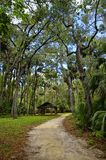 The recreation area in the Ocala National Forest located in Juniper Springs Florida. USA royalty free stock photos