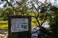 The recreation area in the Ocala National Forest located in Juniper Springs Florida. USA royalty free stock image