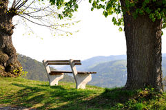 Recreation and calmness. A quiet bench in a beautiful landscape for recreation and calmness Royalty Free Stock Images