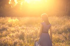 Recreation in Nature. Young woman in dress walking in the field looking aside happy back view in sunlight stock images