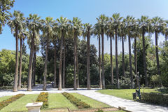 Recreation park in the center of Athens. In Greece Royalty Free Stock Photo