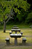 Recreation Site Benches. Recreation Site Wood Picnic Benches - Vertical Photo. Recreation Photo Collection Stock Photos