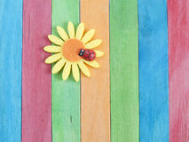 Wooden fence with daisy flower and ladybug Royalty Free Stock Photo