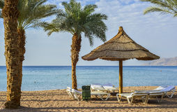 Recreational facilities on sandy beach, Eilat Royalty Free Stock Images