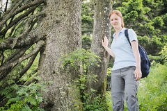Recreational Hiker in a Forest Stock Images