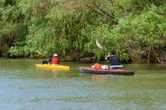 Recreational Kayaking-Canoeing on Danube Delta adventure in Romania wildlife.  royalty free stock image