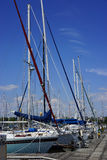 Recreational sailboats in harbor Royalty Free Stock Image