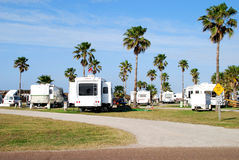 Recreational vehicles. In an RV park with palm trees. South Padre Island, Texas stock images