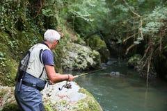 Recreative fiske av foreller royaltyfria foton