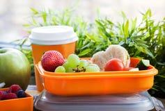 Rectángulo de almuerzo con el emparedado y las frutas Imagen de archivo libre de regalías