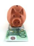Rectángulo de dinero del cerdo Fotografía de archivo