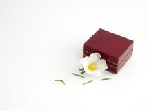 Rectángulo de joyería y flor de la margarita Foto de archivo libre de regalías