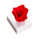 Rectángulo de regalo con la rosa del rojo Fotografía de archivo