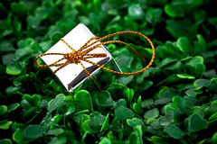 Rectángulo de regalo en fondo herboso imagen de archivo libre de regalías