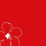 Rectángulo rojo del hibisco ilustración del vector