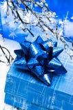 Rectángulo y ramificación azules de regalo fotografía de archivo libre de regalías