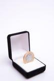 Rectángulos de joyas con la moneda Imágenes de archivo libres de regalías