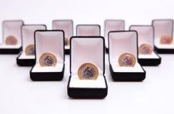 Rectángulos de joyas con la moneda Fotografía de archivo libre de regalías