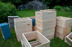 Rectángulos estupendos de la colonia inacabada de la abeja Imágenes de archivo libres de regalías