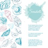 Rectangle composition for template of hand drawn sketch with seashells. Blue elements and spot isolated on white background. stock illustration