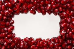 Rectangle of fresh pomegranate seeds  on white. Background Stock Photography