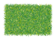 Rectangle of grass. An illustration of background with green grass Stock Photo