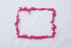 Rectangle pink flower frame. Of coral vine on white fabric background from top view Stock Photography