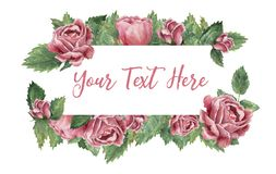 Rectangle shaped frame made of pink blooming roses vector illustration