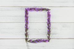 Rectangle wreath of violet liatris flowers. On white wood background with copy space Royalty Free Stock Photos