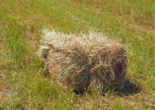 Rectangular bales of hay on the field Royalty Free Stock Photography