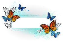 Rectangular banner with butterflies monarchs Stock Photos