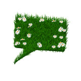 Rectangular bubble for speech with daisies and grass texture  on white background. Bio organic banner. Advertising Royalty Free Stock Photography
