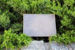 Rectangular empty iron plate on a fir-tree background Stock Image