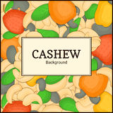 The rectangular frame on cashew nut background. Vector card illustration. Nuts ,  fruit in the shell, whole, shelled Royalty Free Stock Images