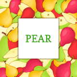 The rectangular frame on color pears background. Vector card illustration. Stock Photography