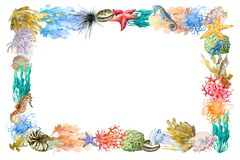 Free Rectangular Frame Of Underwater Reef Elements, Coral, Sponge, Urchin, Anemones, Starfish, Seaweed, Shell. Copy Space For Design. Stock Images - 171429684